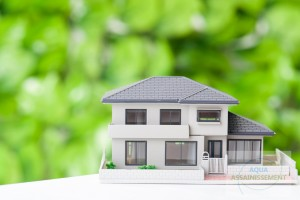 Entretenir ma maison. Quels sont les produits d'entretien pour la maison compatibles avec un assainissement autonome ?