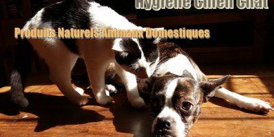 Hygiène Chien Chat - Produits Naturels Animaux Domestiques
