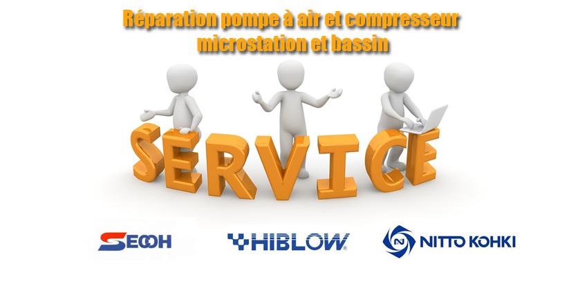 Réparation pompe à air compresseur microstation et bassin