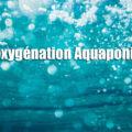 Oxygénation Aquaponie