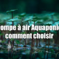Pompe à air Aquaponie comment choisir