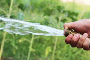 Quelle pompe choisir pour arroser mon jardin
