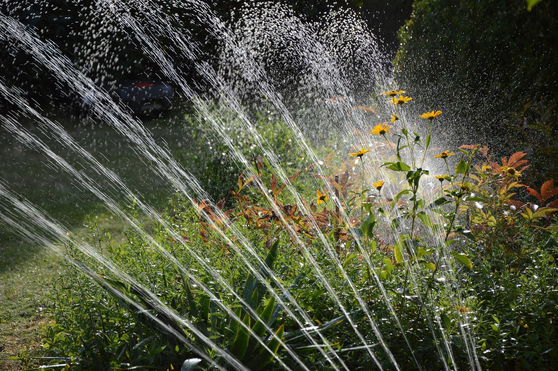 Utiliser l'eau de pluie pour de l'arrosage automatique