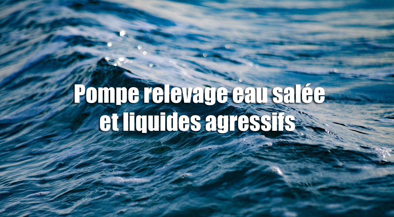 Pompe relevage eau salée et liquides agressifs